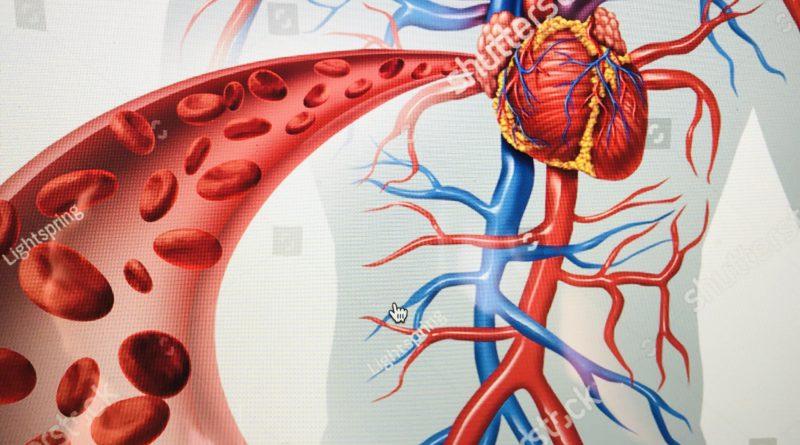 Wpływ CBD na choroby układu sercowo-naczyniowego