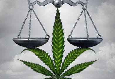 CBD  to nie narkotyk